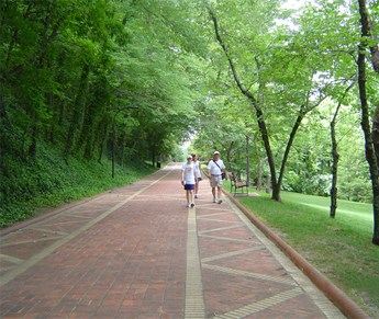 View of some visitors strolling on the tree lined Grand Promenade, a wide red brick walkway with a buff brick zigzag border pattern on each side