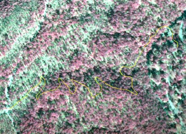 Portion of infrared aerial map of park with Gulpha Gorge Trail drawn in yellow.