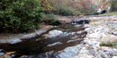 Gulpha Creek in fall, below campground amphitheater, with bridge over Gorge Road in right background