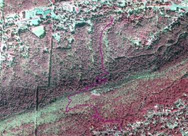 Portion of aerial infrared photo of park showing Mountain Top Trail in dark pink