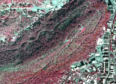 portion of infrared aerial photo of park with Oak Trail shown in dark red