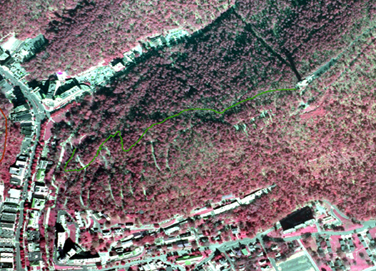portion of infrared aerial photo of park with Peak Trail drawn in green