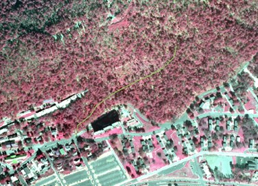 Portion of infrared aerial photo of park with Reserve Trail shown in olive green