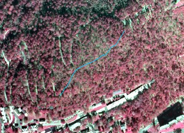 Portion of infrared aerial photo of park with Shortcut Trail shown in blue