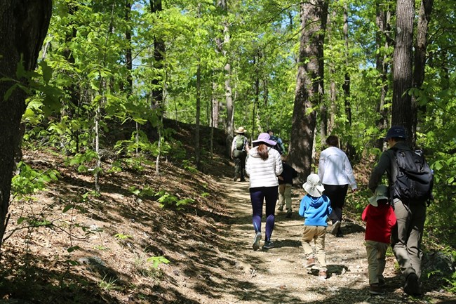 Visitors hike on a trail partially shaded by trees