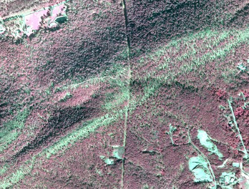 section of infrared aerial photo of park with Balanced Rock Trail drawn in