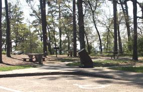 Shady picnic area with concrete tables and grills on Hot Springs Mountain with accessible parking space in the foreground.