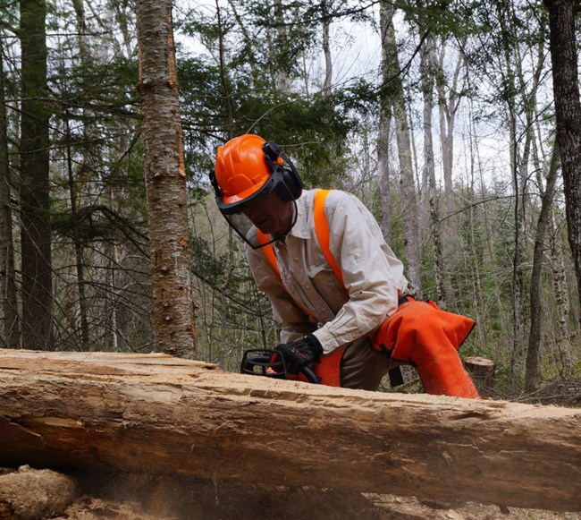 Sometimes volunteers must use chainsaws.