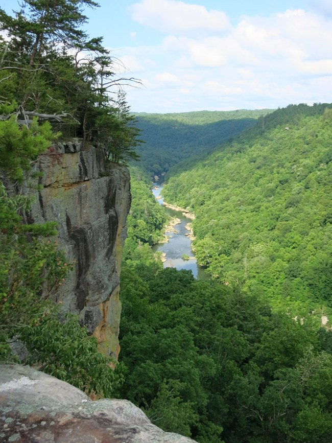 View from Angel Falls Overlook. Cliff to the left and river in the background