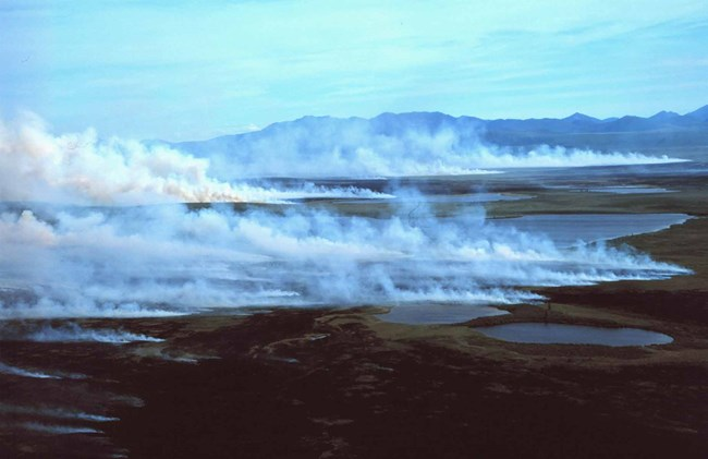 A fire rages across the tundra near the Baird Mountains.