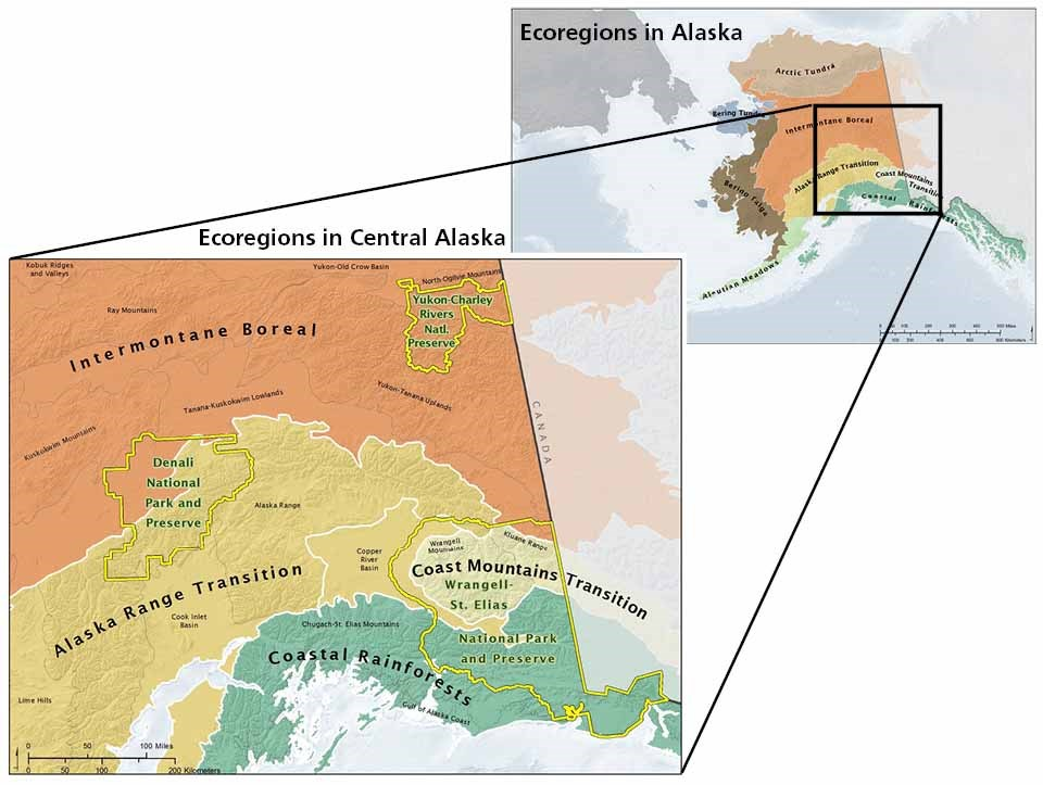 A map of the ecoregions comprising the Central Alaska Network parks with a map of Alaska ecoregions for context.
