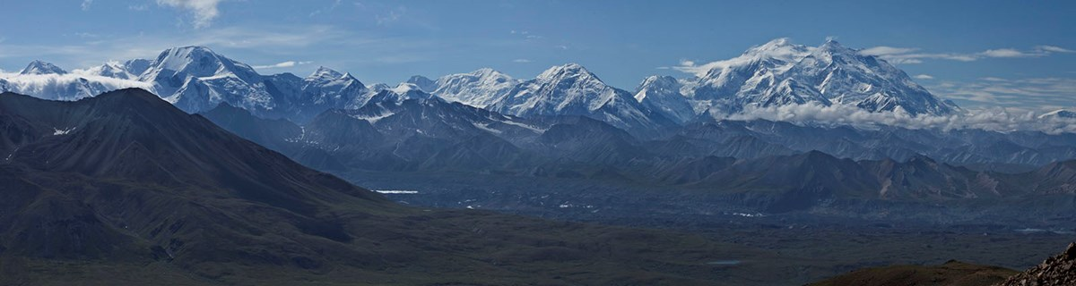 The Alaska Range, including Denali, is a long mountain range surrounded by boreal forest and tundra.