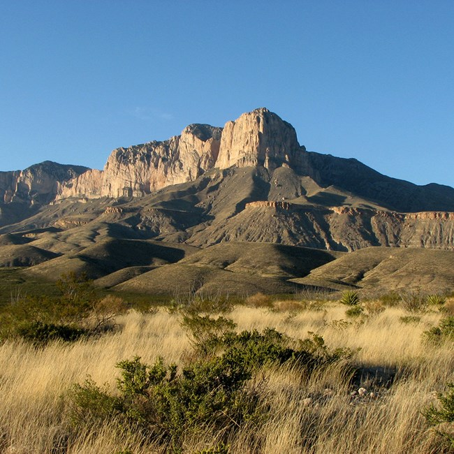 Guadalupe Mountains and Chihuahuan Desert grasslands