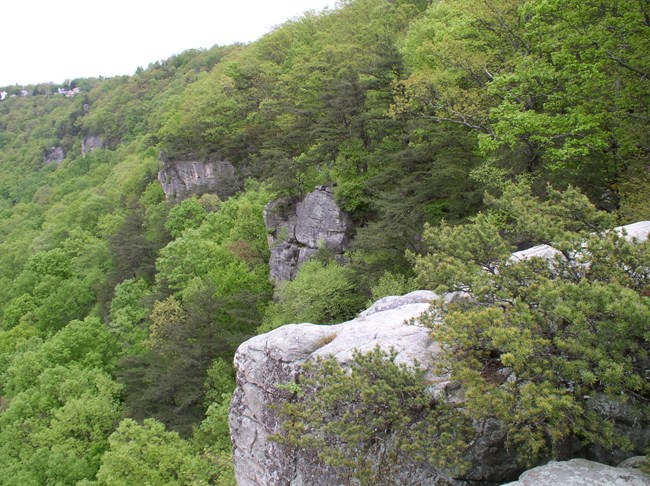 Sandstone cliffs at Chickamauga and Chattanooga National Military Park.