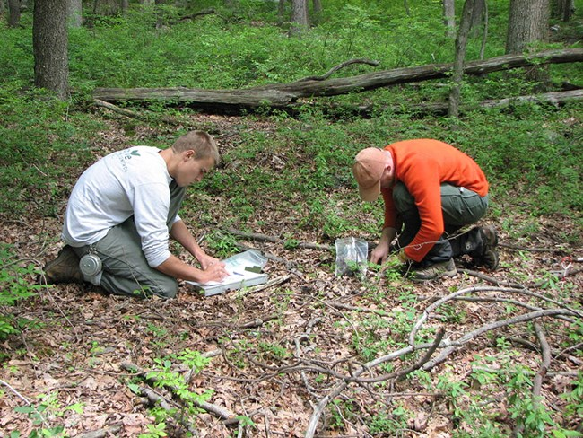 One person collecting a soil sample while another records data