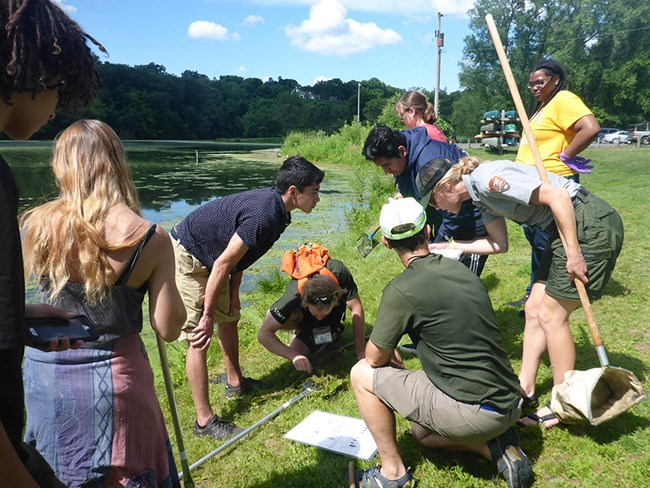 Students examining the contents of a net by the side of a river