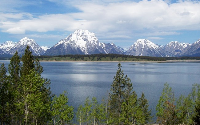 View of snow-capped Teton Range with Jackson Lake and forest in foreground