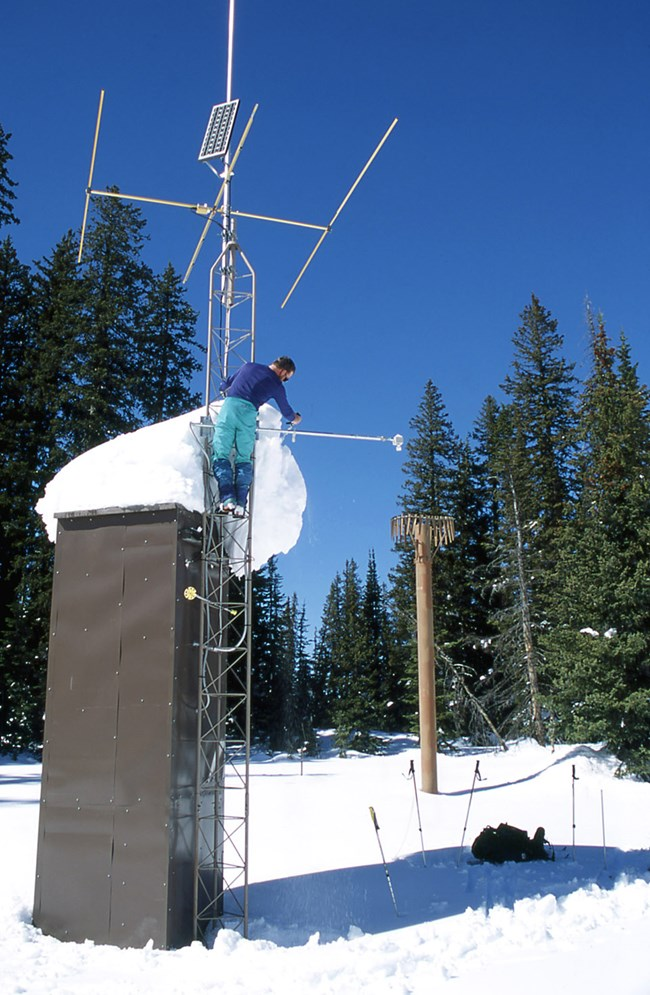 Image result for climate scientist collecting data