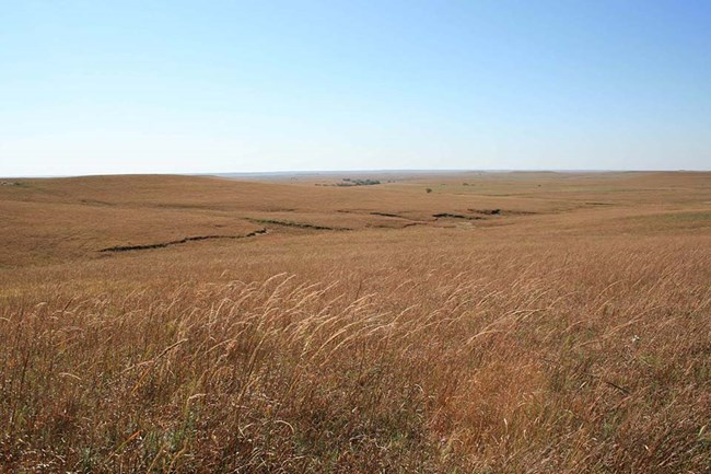 Landscape photo at Tallgrass Prairie National Preserve
