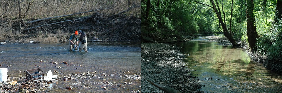 Left Image: Two employees collecting invertebrate samples in a stream. Right Image: Monitoring area of a creek.