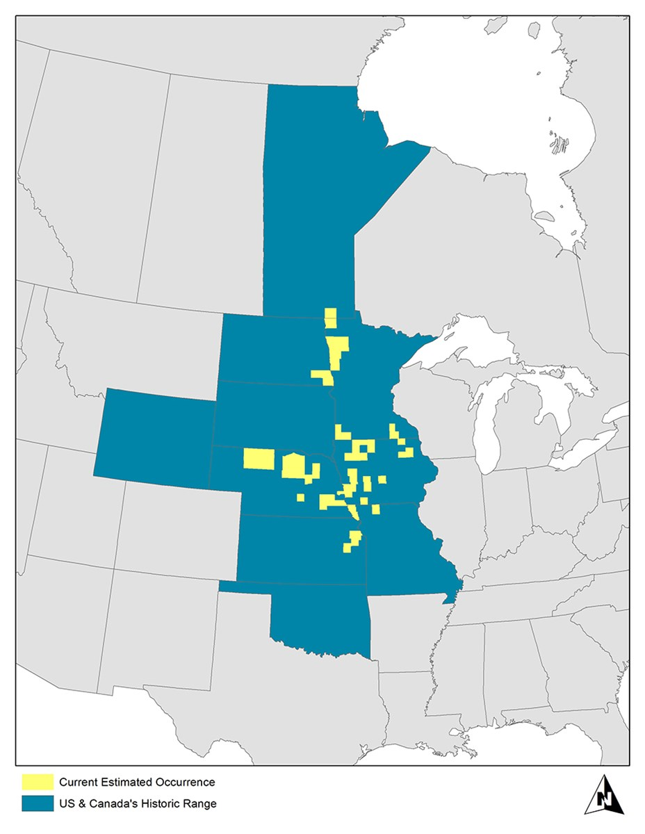 Map depicting the decline in range of the Western Prairie Fringed Orchid.