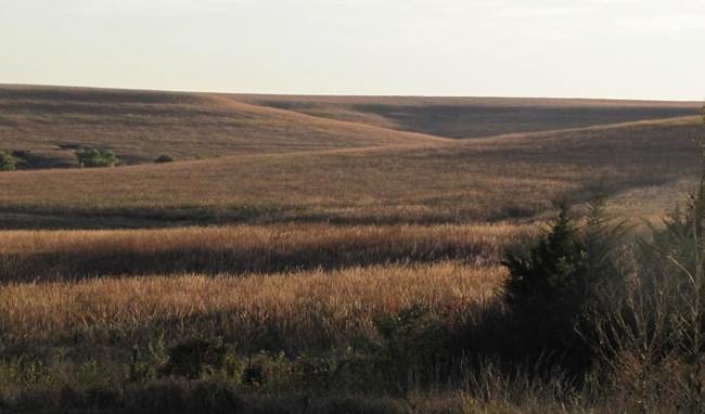 Hills catch evening sunlight at Tallgrass Prairie National Preserve