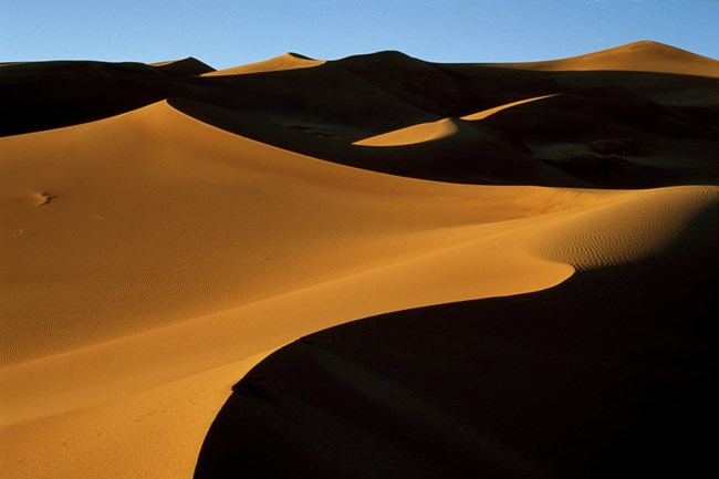 Sand dunes in high contrast light and shadow