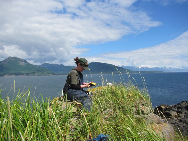 Park ranger recording sitting on a grassy ledge overlooking a lake, recording data in a field notebook