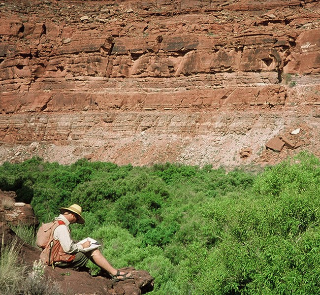 Technician sitting on a rocky outcrop, writing notes about the vegetation beneath him