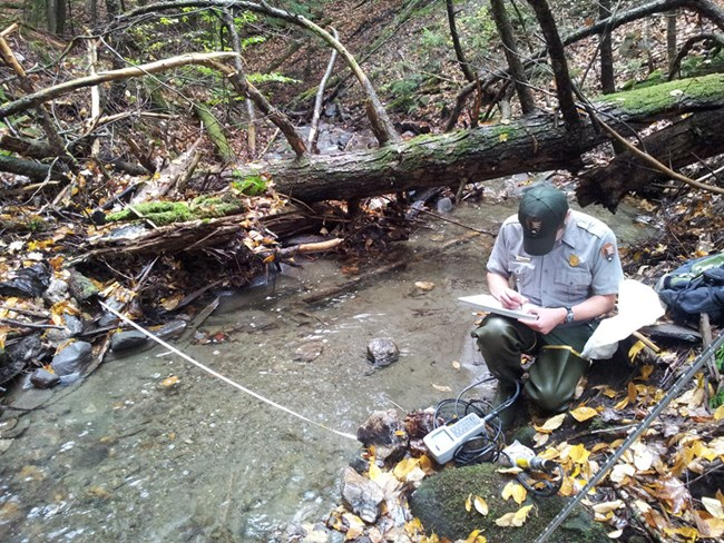 NPS technician next to a stream collecting and recording data