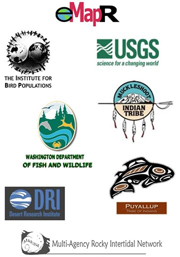 NCCN partner logos: USGS, Institute for Bird Populations, Muckleshoot and Puyallup Tribes, Multi-Agency Rocky Intertidal Network, Washington Dept. of Fish & Wildlife, Desert Research Institute, Environmental Monitoring Analysis & Process Recognition Lab
