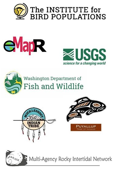 Image of the NCCN partner logos: USGS, Institute for Bird Populations, Muckleshoot and Puyallup Tribes, Multi-Agency Rocky Intertidal Network, Washington Dept. of Fish & Wildlife, Environmental Monitoring Analysis & Process Recognition Lab