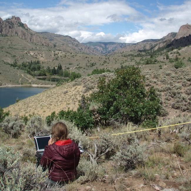Person uses a field laptop next to transect tape above a lake