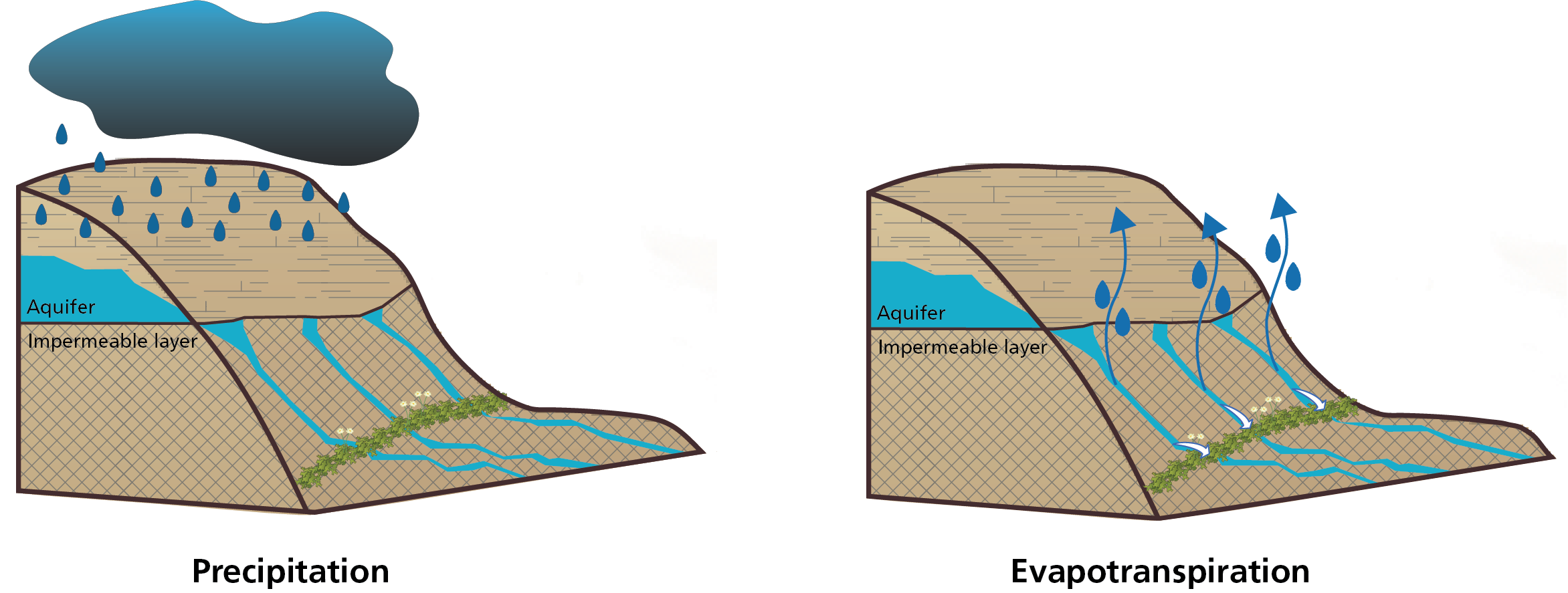 Conceptual diagrams showing precipitation and potential evapotranspiration processes at springs.