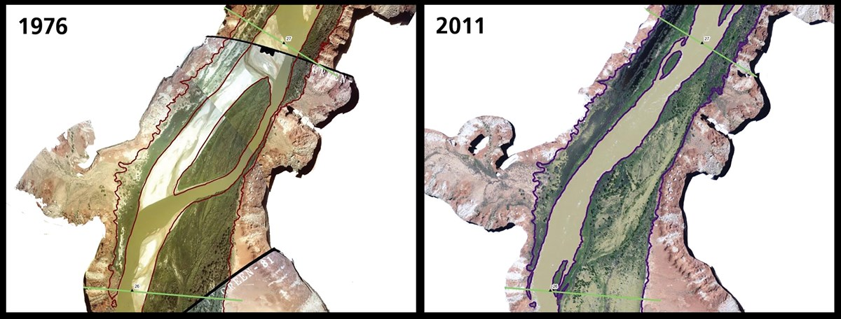 Satellite imagery showing disappearance of a side channel from 1976 to 2011