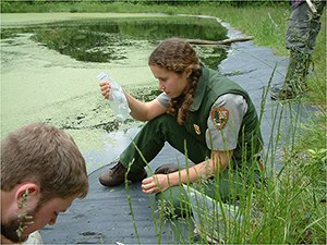 A woman sitting next to a pond examines a salamander held in a plastic bag.