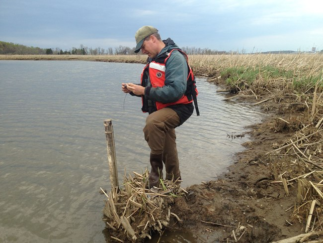 At waters edge in a marsh, a man reads a water level device.