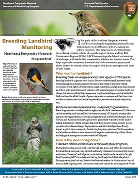 Landbird program brief
