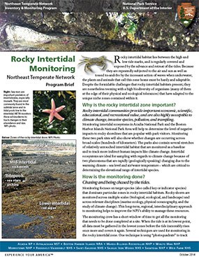 Rocky intertidal program brief