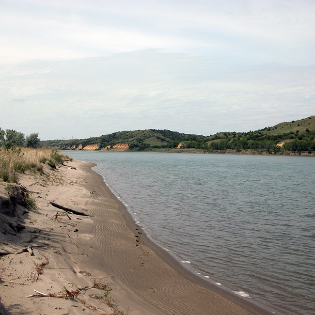 Wide view of a river with sandy banks and bushes in the foreground