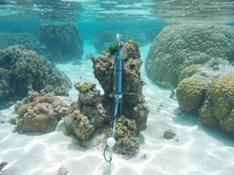 Water quality monitoring device on a coral reef