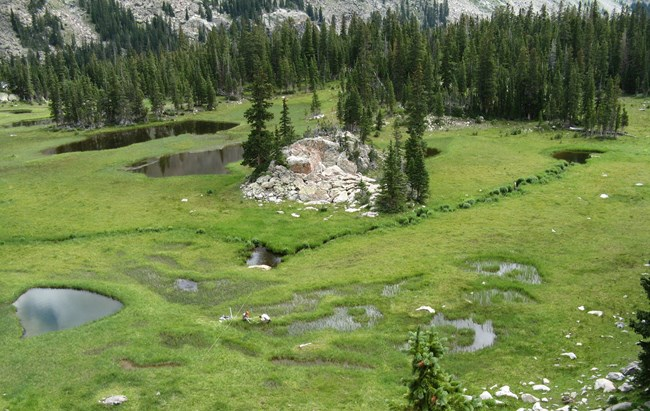 Wetland monitoring in Rocky Mountain National Park