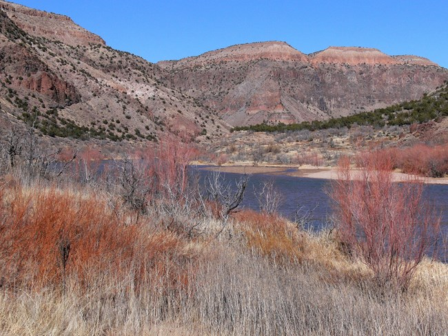 Willows and colorful rock formations contrast with a blue Rio Grande and clear sky on a nice winter day.