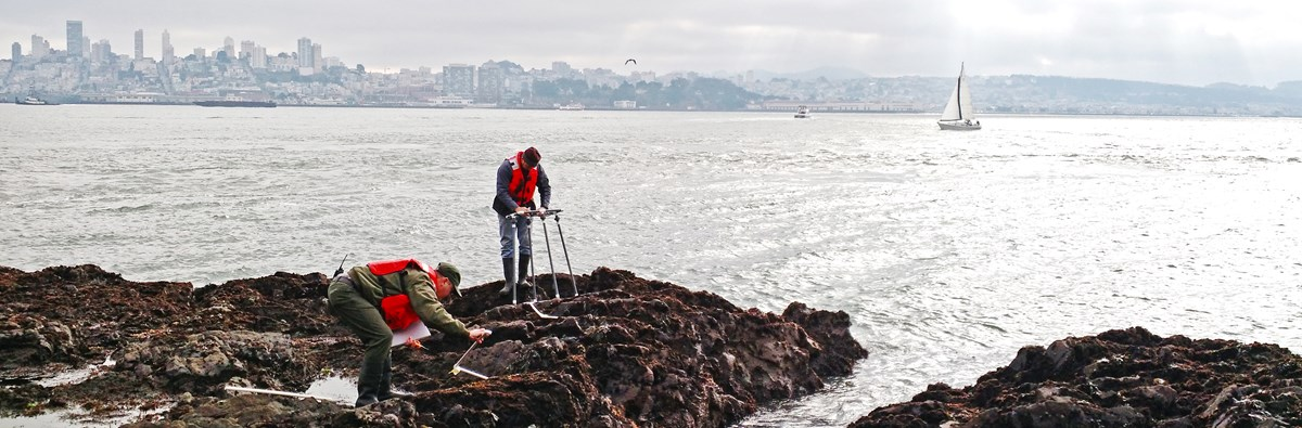 Park staff take measurements on a rocky surface with the city in the background