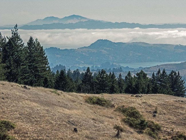 View of Mount Diablo from the Dipsea trail on a cloudy day.