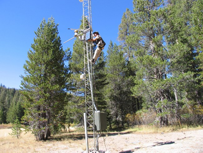 Scientist climbs weather station tower to make equipment adjustments near Soda Springs Meadow at Devils Postpile National Monument.