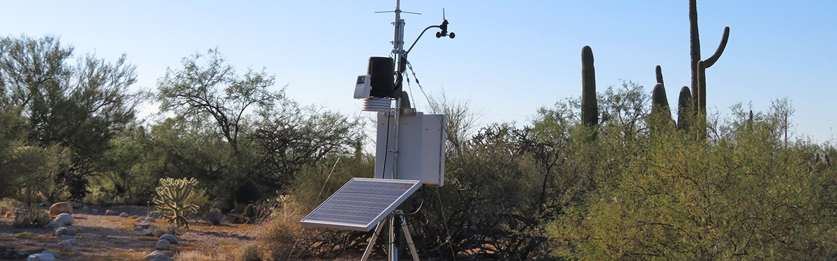 Solar-powered climate monitoring station amid desert vegetation
