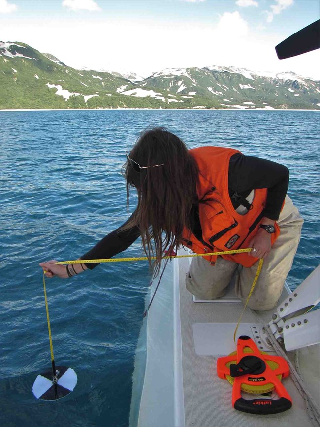 A technician lowers a secci disk into the water to measure turbidity.
