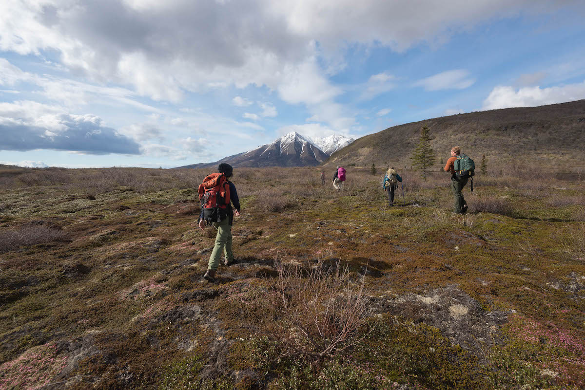 A group of people hike across tundra towards a snow covered mountain