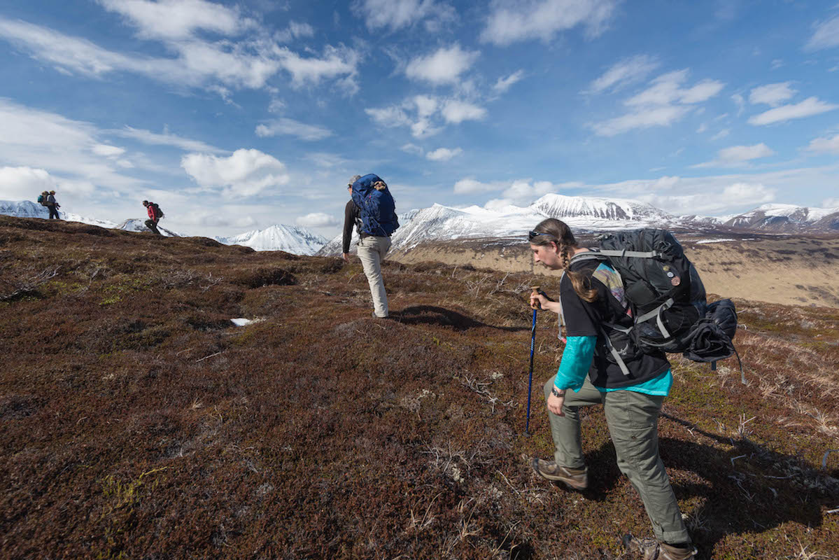 A group of people hike uphill on brown tundra